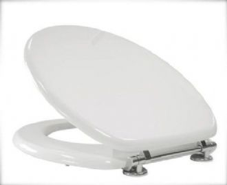 Matt White Toilet Seat